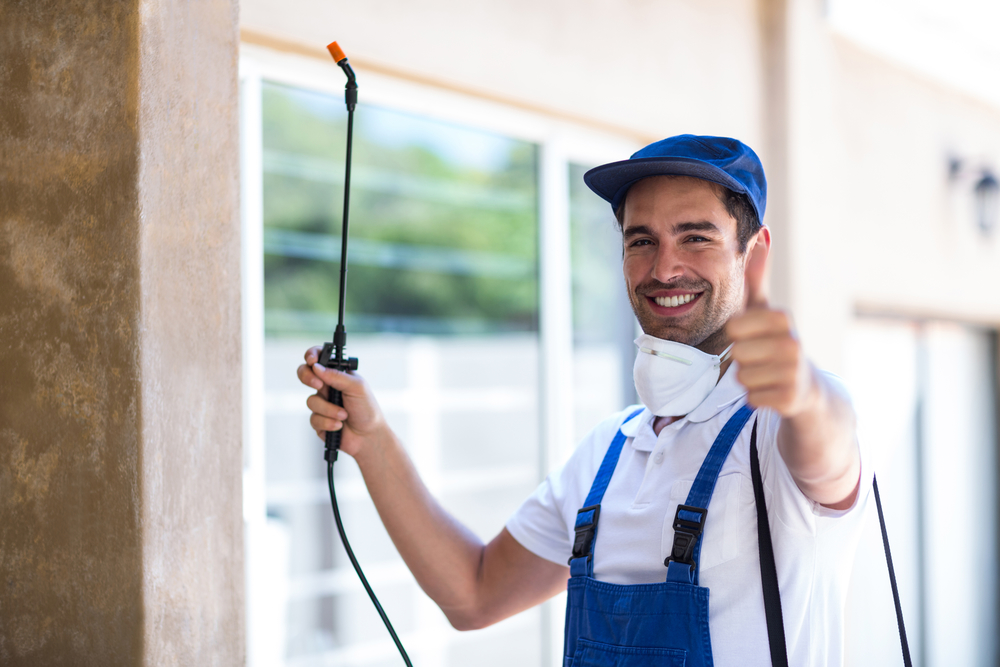 what is pest control boca raton?