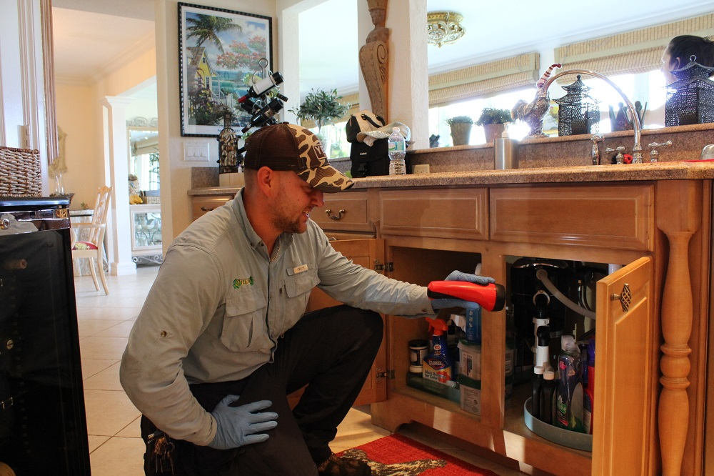 Where can I find Pest Control Services West Palm Beach?