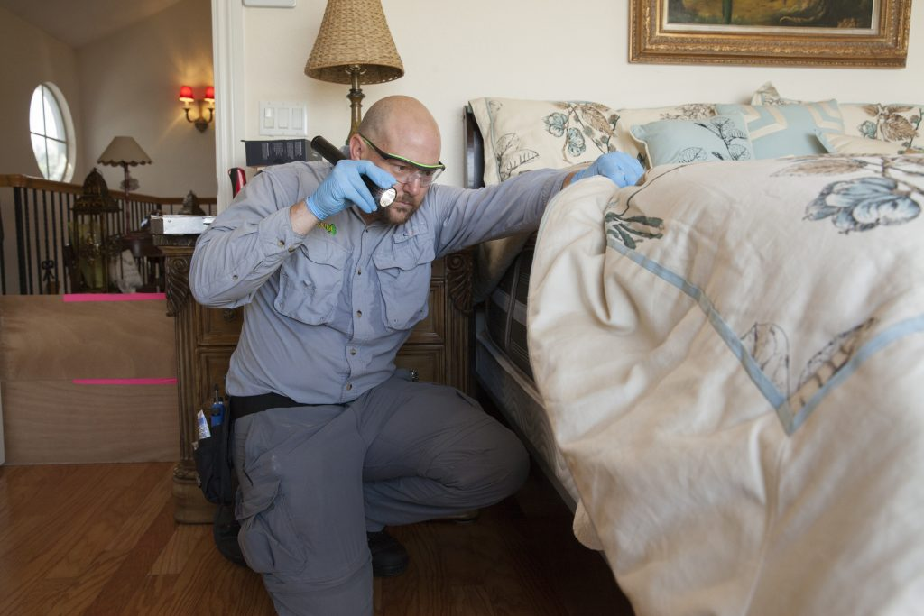 who offers bed bug extermination west palm beach?