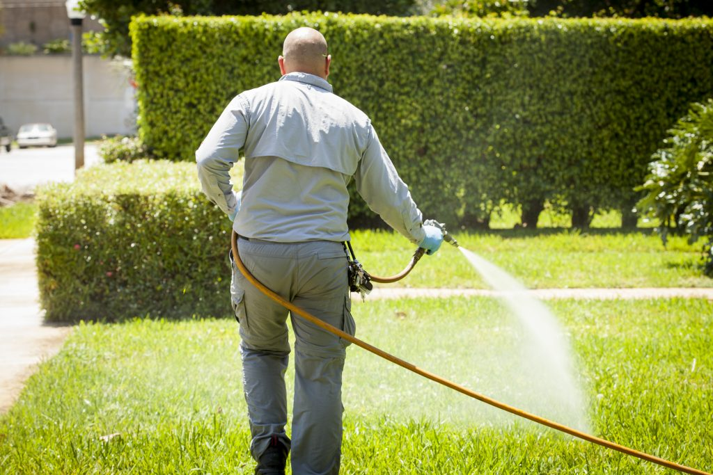 who offers lawn care west palm beach?